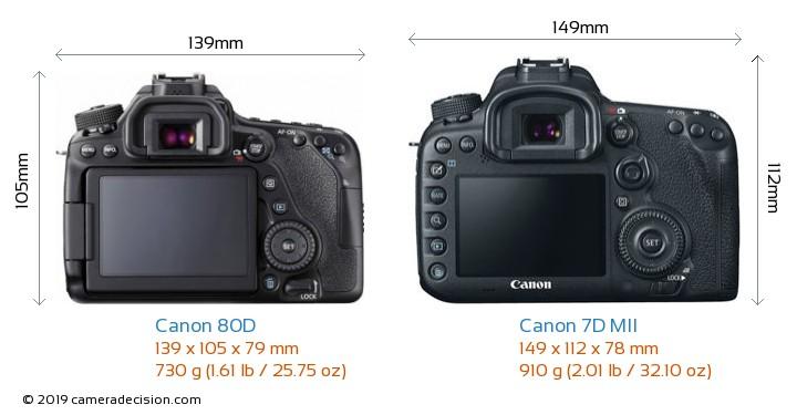 Canon 80D vs Canon 7D MII Camera Size Comparison - Back View