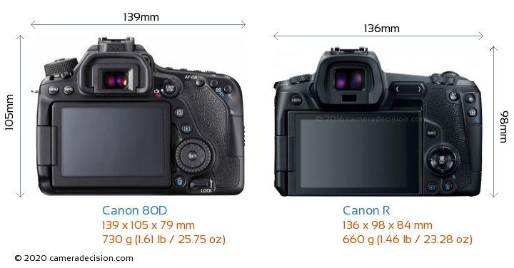 Canon 80D vs Canon R Camera Size Comparison - Back View