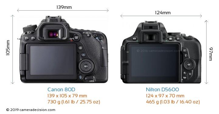 Canon 80D vs Nikon D5600 Camera Size Comparison - Back View