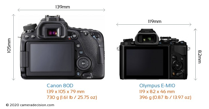 Canon 80D vs Olympus E-M10 Camera Size Comparison - Back View