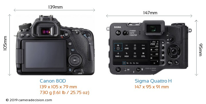 Canon 80D vs Sigma Quattro H Camera Size Comparison - Back View