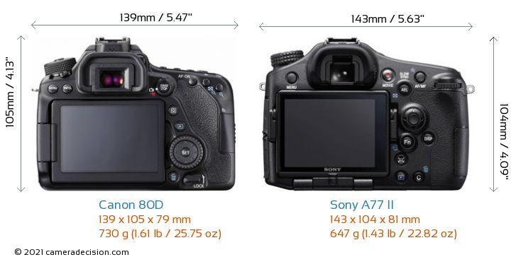Canon 80D vs Sony A77 II Camera Size Comparison - Back View