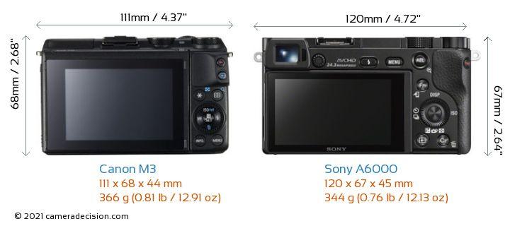 Canon M3 vs Sony A6000 Camera Size Comparison - Back View