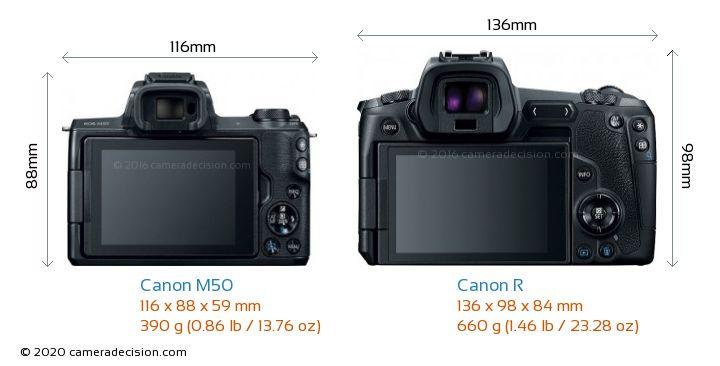 Canon M50 vs Canon R Camera Size Comparison - Back View