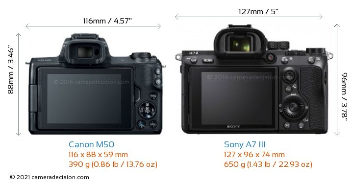 Canon M50 vs Sony A7 III Camera Size Comparison - Back View
