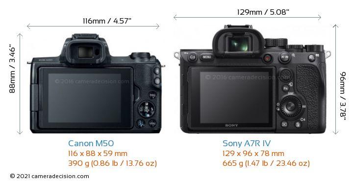 Canon M50 vs Sony A7R IV Camera Size Comparison - Back View