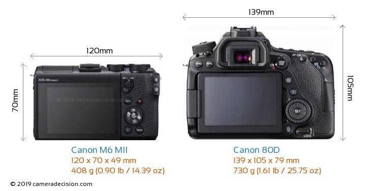 Canon M6 MII vs Canon 80D Camera Size Comparison - Back View