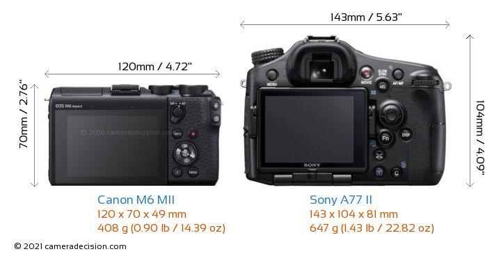 Canon M6 MII vs Sony A77 II Camera Size Comparison - Back View