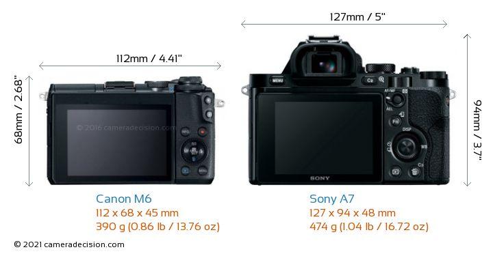 Canon M6 vs Sony A7 Camera Size Comparison - Back View