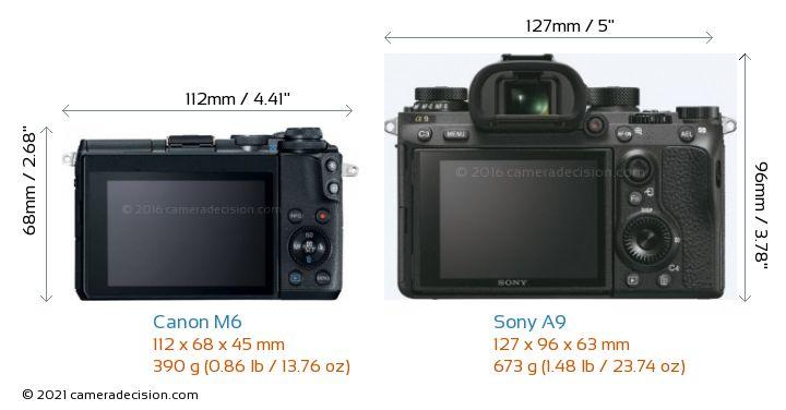 Canon M6 vs Sony A9 Camera Size Comparison - Back View