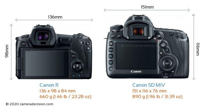 Canon R vs Canon 5D MIV Camera Size Comparison - Back View