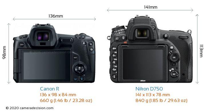 Canon R vs Nikon D750 Camera Size Comparison - Back View