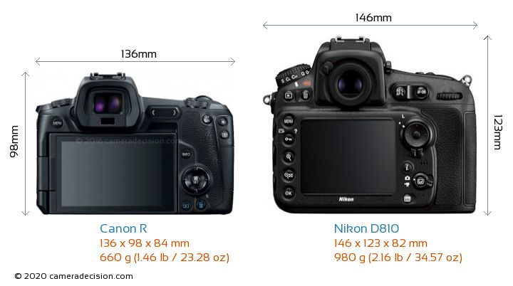 Canon R vs Nikon D810 Camera Size Comparison - Back View