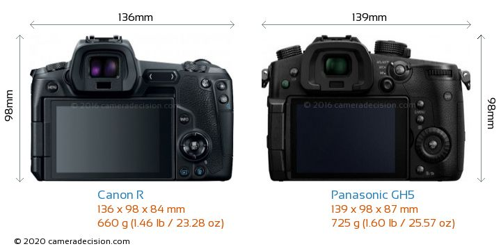 Canon R vs Panasonic GH5 Camera Size Comparison - Back View