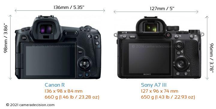 Canon R vs Sony A7 III Camera Size Comparison - Back View