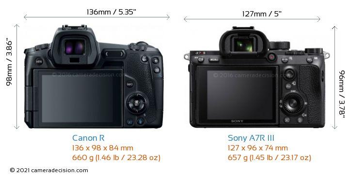 Canon R vs Sony A7R III Camera Size Comparison - Back View