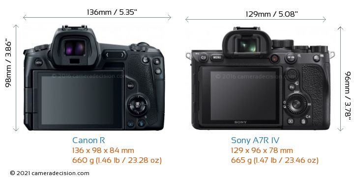Canon R vs Sony A7R IV Camera Size Comparison - Back View