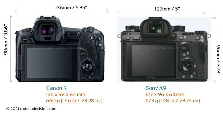 Canon R vs Sony A9 Camera Size Comparison - Back View