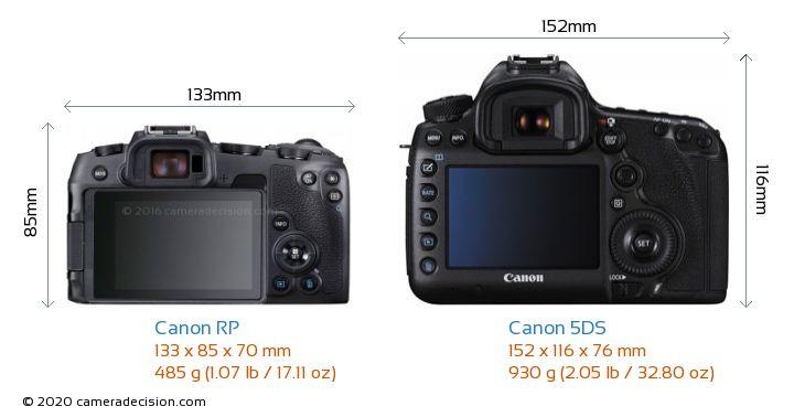 Canon RP vs Canon 5DS Camera Size Comparison - Back View