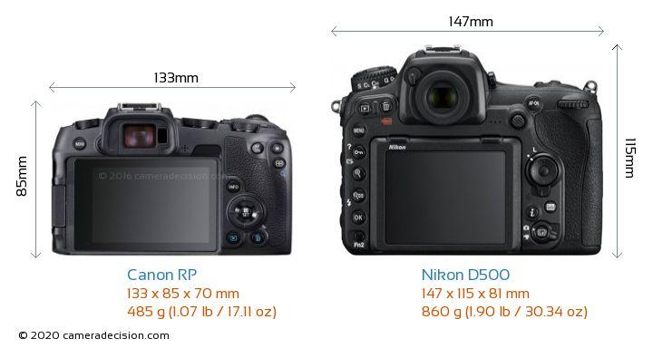 Canon RP vs Nikon D500 Camera Size Comparison - Back View