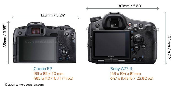Canon RP vs Sony A77 II Camera Size Comparison - Back View
