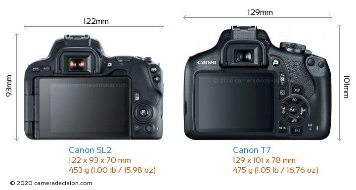 Canon SL2 vs Canon T7 Camera Size Comparison - Back View