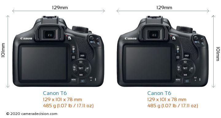 Canon T6 vs Canon T6 Camera Size Comparison - Back View