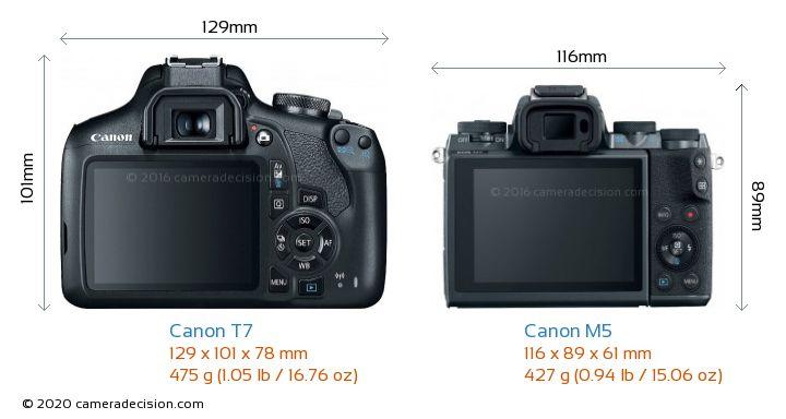 Canon T7 vs Canon M5 Camera Size Comparison - Back View