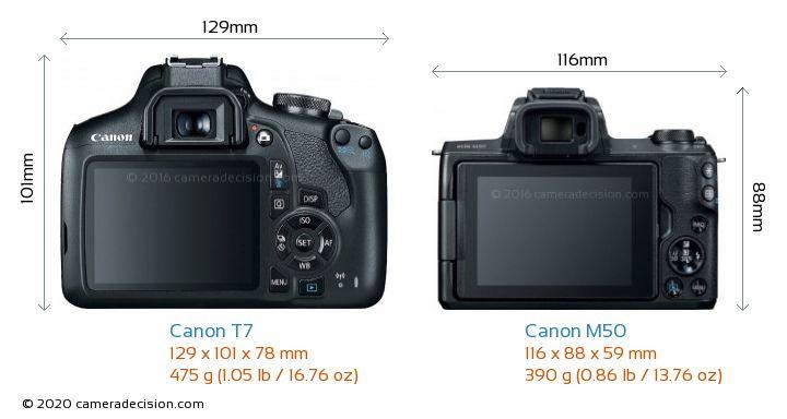 Canon T7 vs Canon M50 Camera Size Comparison - Back View