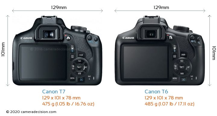 Canon T7 vs Canon T6 Camera Size Comparison - Back View