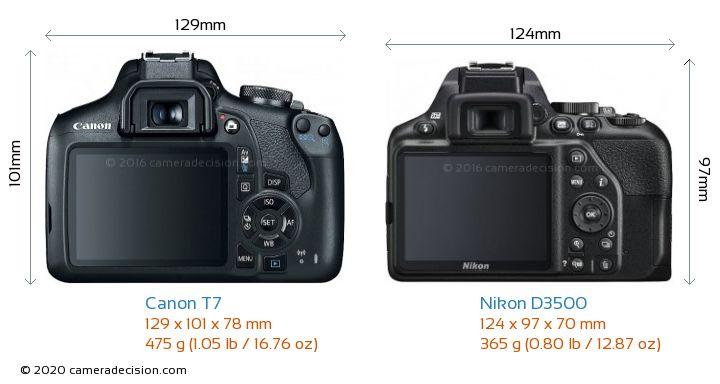 Canon T7 vs Nikon D3500 Camera Size Comparison - Back View