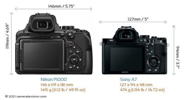 Nikon P1000 vs Sony A7 Camera Size Comparison - Back View