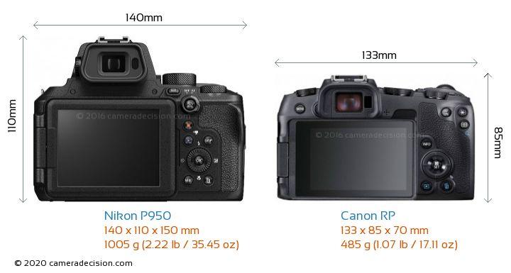 Nikon P950 vs Canon RP Camera Size Comparison - Back View