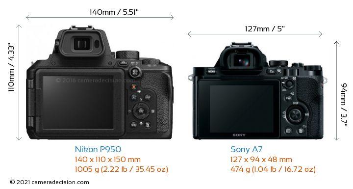 Nikon P950 vs Sony A7 Camera Size Comparison - Back View