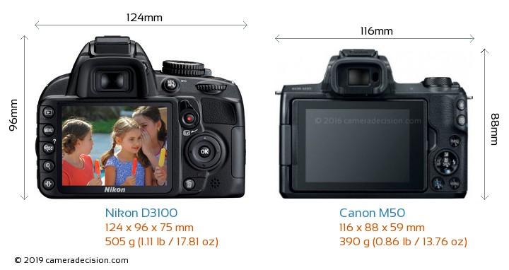 Nikon D3100 vs Canon M50 Camera Size Comparison - Back View