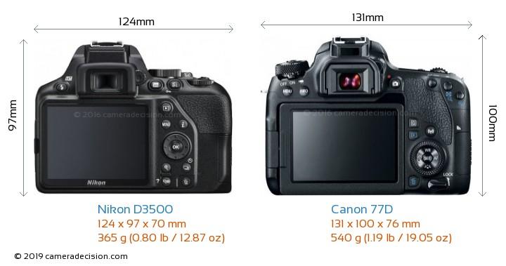 Nikon D3500 vs Canon 77D Camera Size Comparison - Back View