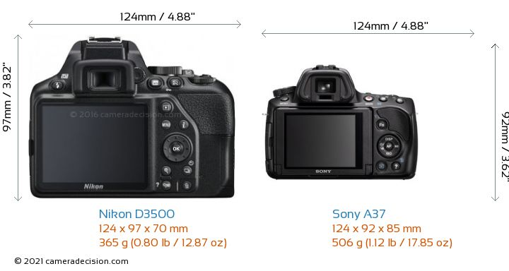 Nikon D3500 vs Sony A37 Camera Size Comparison - Back View