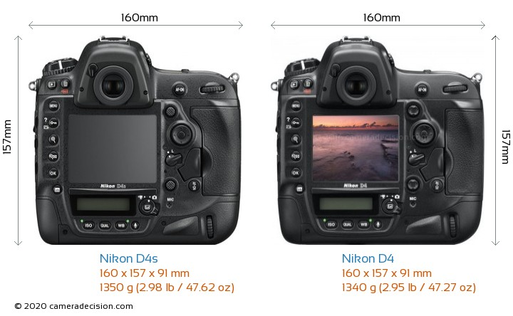 Nikon D4s vs Nikon D4 Camera Size Comparison - Back View
