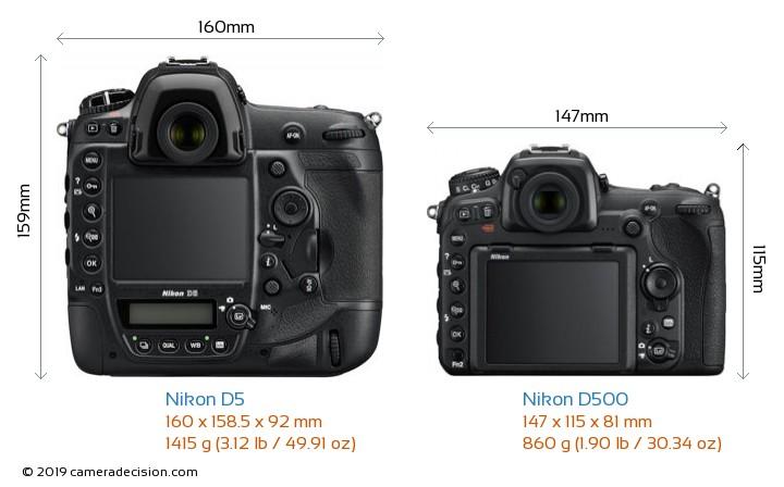 Nikon D5 vs Nikon D500 Camera Size Comparison - Back View