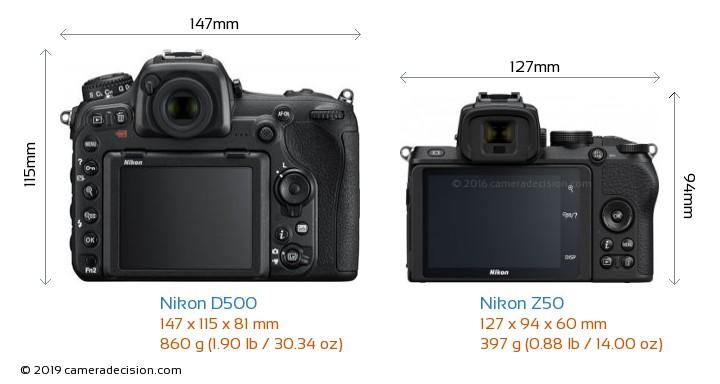 Nikon D500 vs Nikon Z50 Camera Size Comparison - Back View