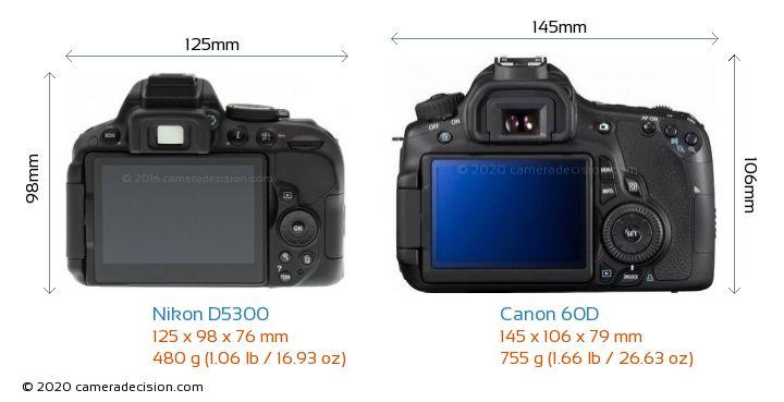 Nikon D5300 vs Canon 60D Camera Size Comparison - Back View