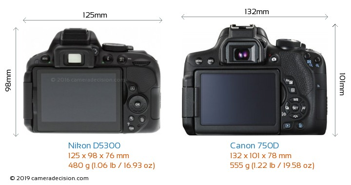 Nikon D5300 vs Canon 750D Camera Size Comparison - Back View