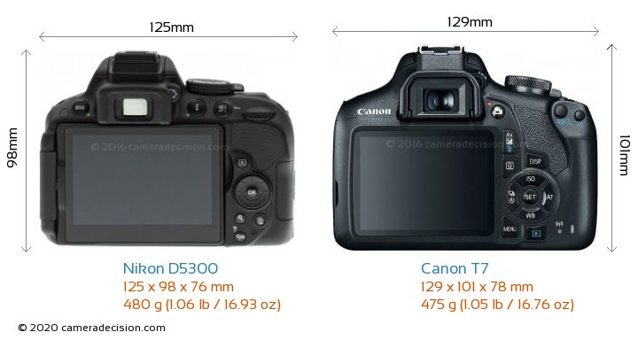 Nikon D5300 vs Canon T7 Camera Size Comparison - Back View