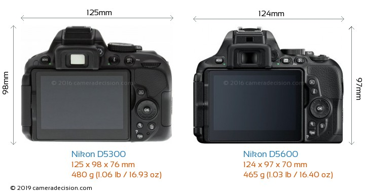 Nikon D5300 vs Nikon D5600 Camera Size Comparison - Back View
