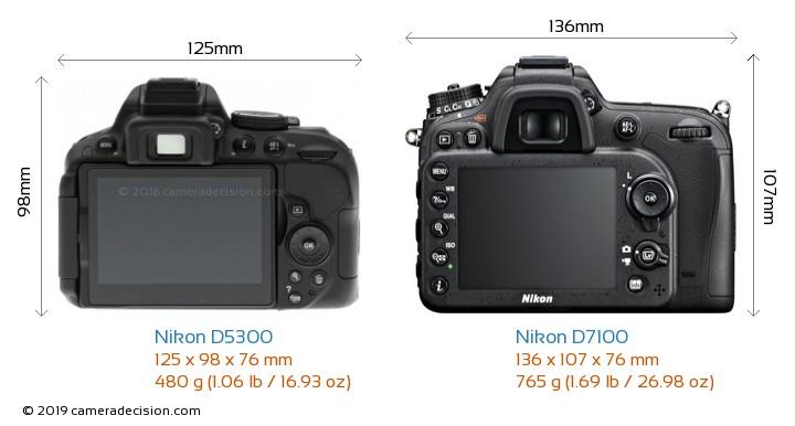 Nikon D5300 vs Nikon D7100 Camera Size Comparison - Back View