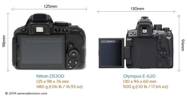 Nikon D5300 vs Olympus E-620 Camera Size Comparison - Back View