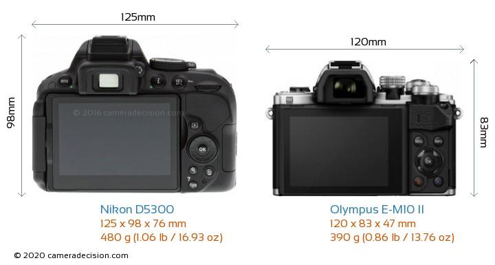 Nikon D5300 vs Olympus E-M10 II Camera Size Comparison - Back View