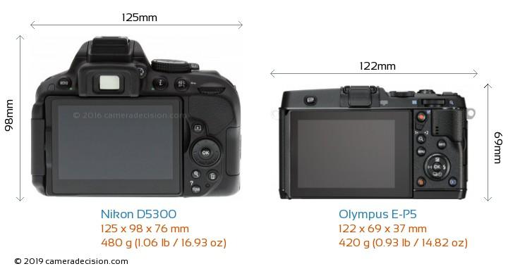 Nikon D5300 vs Olympus E-P5 Camera Size Comparison - Back View