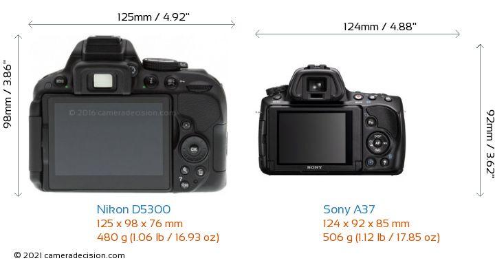 Nikon D5300 vs Sony A37 Camera Size Comparison - Back View