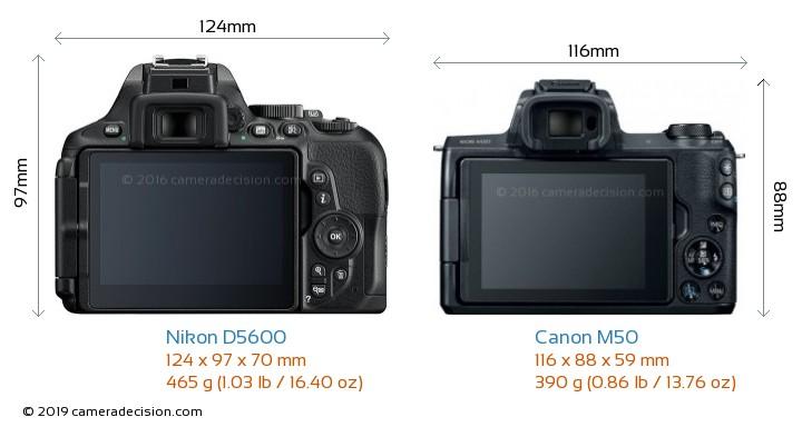 Nikon D5600 vs Canon M50 Camera Size Comparison - Back View